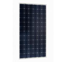 Victron BlueSolar 100Wp mono (1200x545×35mm)
