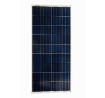 Victron BlueSolar 60Wp Poly  (668x545x25mm)